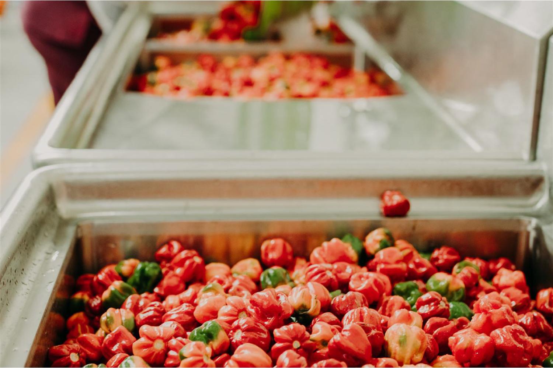 Growing the Bertie's pepper sauce market